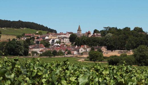 ワインは大人の男の嗜み ~ブルゴーニュワイン通への道~ 第1回 ルモワスネ