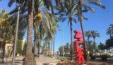 マヨルカ島からの便り⑦〜スペインでは、海水浴が解禁になり、夏がスタート〜